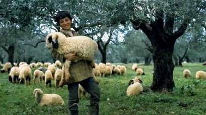 The Care of Souls: A Young Shepherd with a Lamb