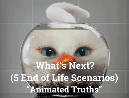 What's Next? Five Possible End of Life Scenarios